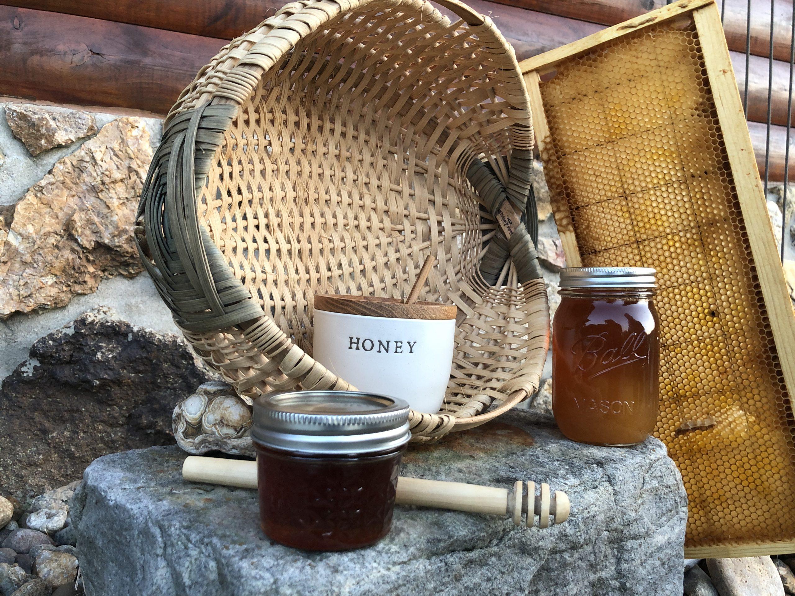 Chestnut honey SB 2021 (16)